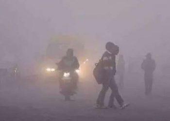 delhi weather