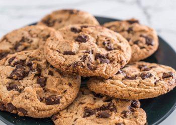 biscuit tasting job
