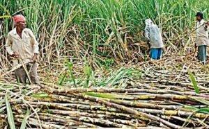 CM Yogi on Farmers Protests