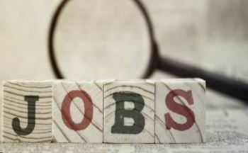 Big bang for the unemployed government, recruitment to 50 thousand posts soon